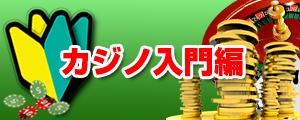 カジノ初心者