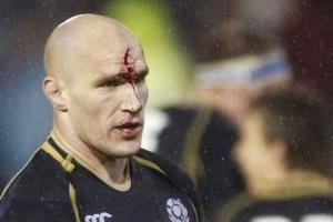 rugby-joe-ansbro-alasdair-strokosch-image-1-478205952